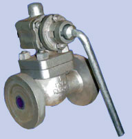 Cast Steel Blowdown Valve